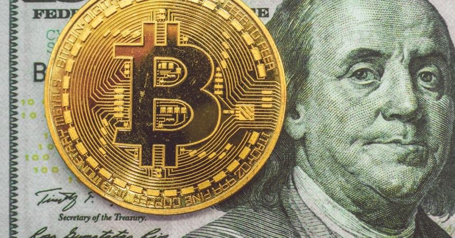 Elegir el mejor casino criptográfico en línea